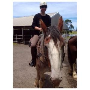 HORSE RIDING IN NSW 2