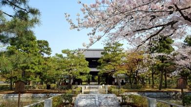 Gion Corner, Kyoto