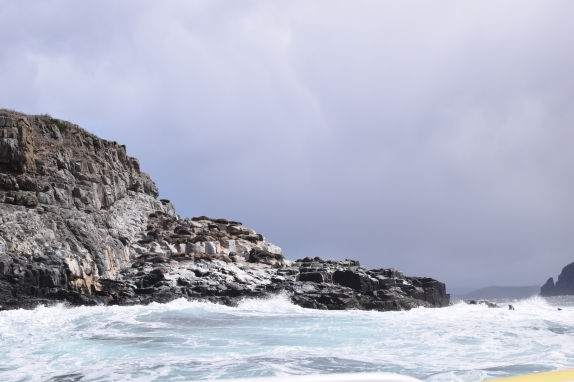 Bruny-Island-Tasmania