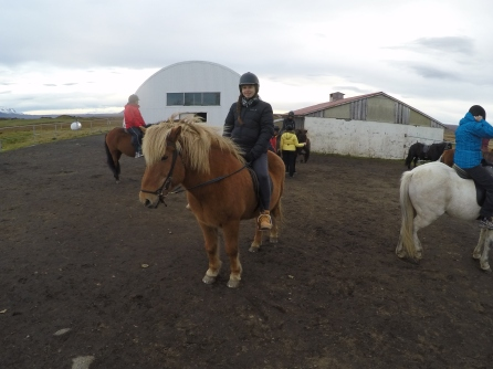 Horse riding in Myvatn