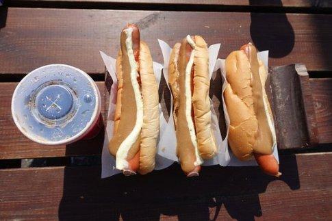 Hotdog_stand_Reykjavik_Iceland