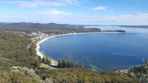 tomaree-mountain-summit-walk-port-stephens