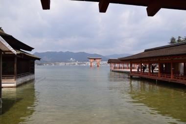 floating-torii-gate-Miyajima-Island