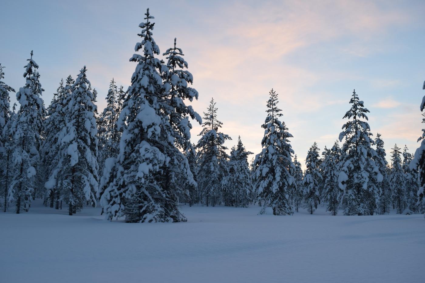 Finland-lapland