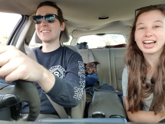 Dog road trip Sprocket