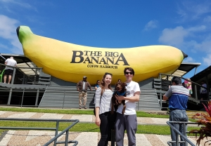 Coffs harbour big banana park