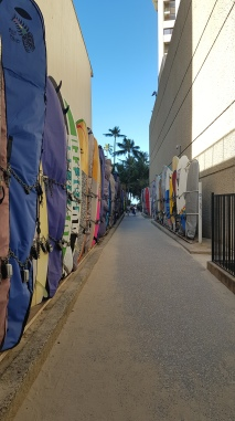 Waikiki surfboards