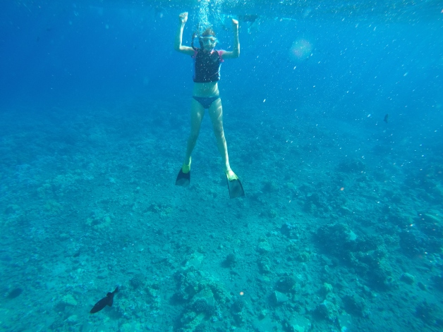 Snorkelling at Molokini